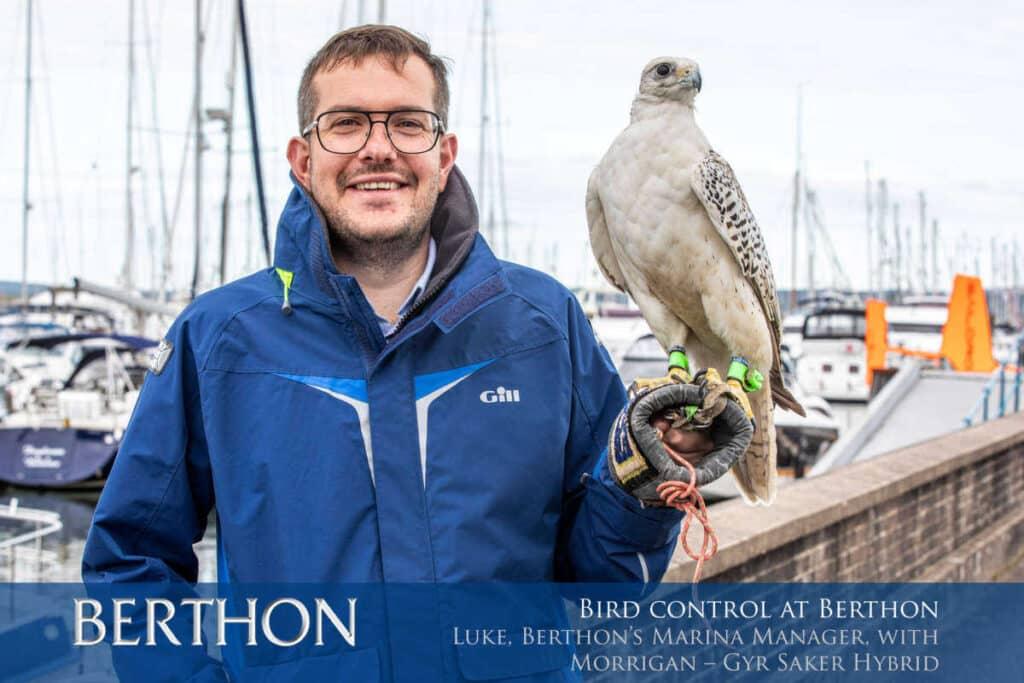 odstraszanie ptakow z portow i stoczni
